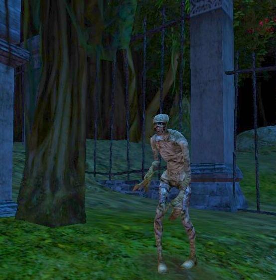 ddo mummy in graveyard